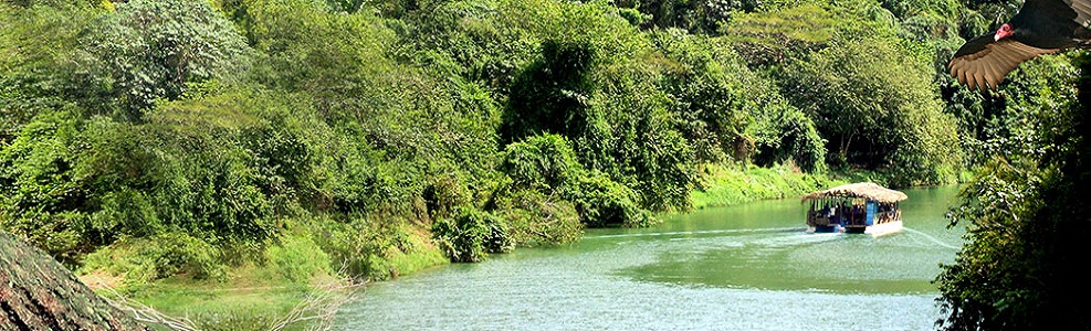 Jungle excursions on Rio Chavon
